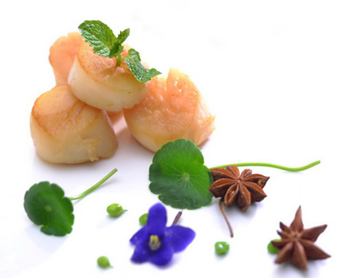 HOME - Clear Ocean Seafood | Vancouver Scallop Wholesale